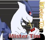Mister Tim